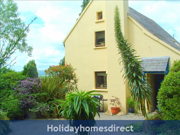 Granary Cottage .. Lots Of Character, Peace And Quiet And All The Mod Cons !: Exotic plants in Granary Cottage garden