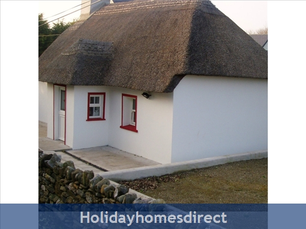 Ballinacourty Thatch Cottage: side view of cottage