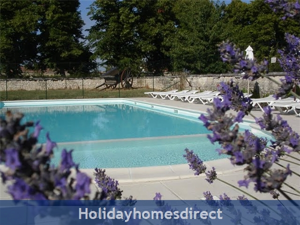 Domaine Les Granges: 2nd SWIMMING POOL