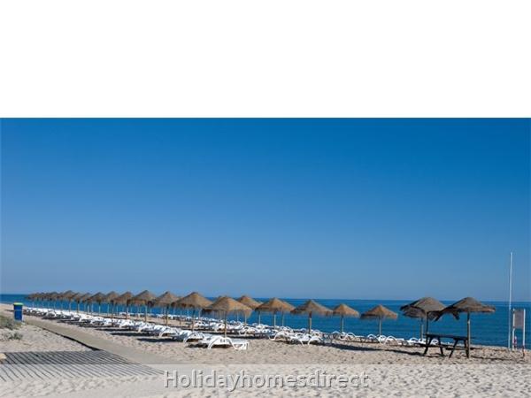 Beach club sunbeds on  the Algarve Portugal