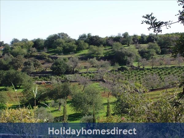 Casa Santolina: View across valley
